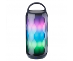 Portable  LED  Speaker NSP-0169