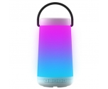 Portable Light Bluetooth Speaker NSP-0161