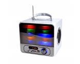 China New design MSP-1045 FM radio SD card Square Dancing speaker bluetooth speaker factory